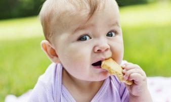 התפתחות תינוקות בגיל 7-8 חודשים | نموّ الأطفال في سن 7-8 أشهر