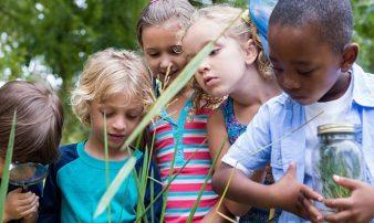 כיצד ילדים לומדים: שנות בית הספר | كيف يتعلم الأولاد: سنوات المدرسة