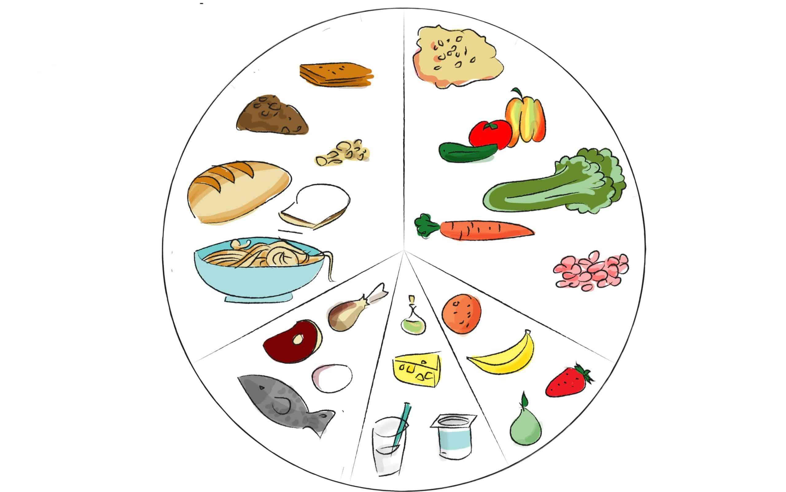 קבוצות מזון בתפריט יומי מאוזן לילדים