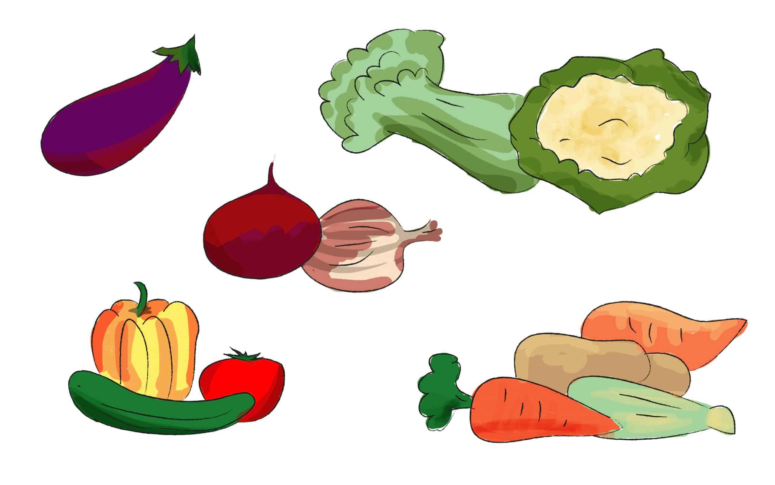 שימוש בירקות בתפריט יומי בריא ומאוזן