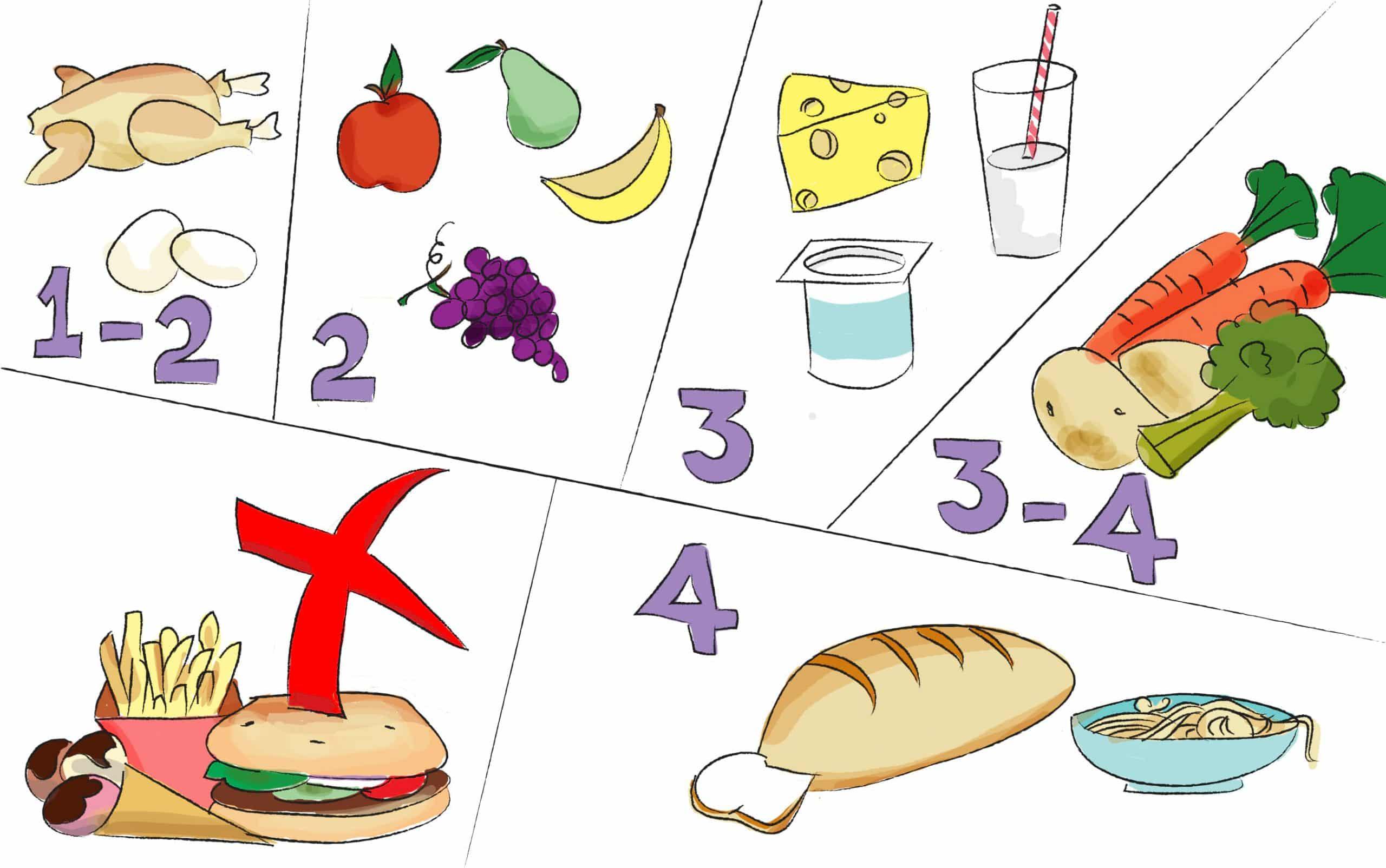 כמויות וקבוצות מזון לפעוטות בני 2-4 שנים